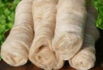 Blended batts, 45% suri, 45% CVM, 10% tussah silk